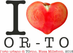 I Love Or-TO, l'orto urbano di Eataly Lingotto
